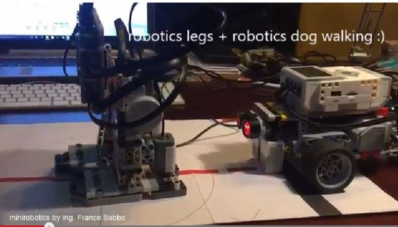 legs-e-dog